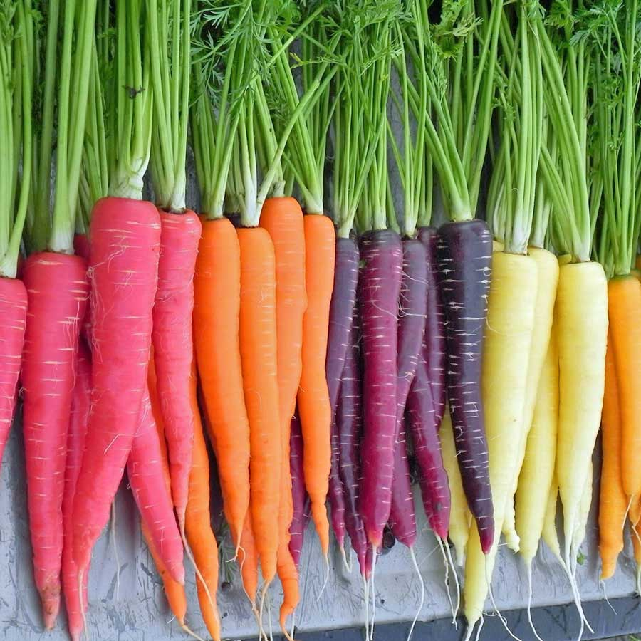 What Color Are Natural Carrots